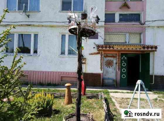 3-комнатная квартира, 63 м², 1/4 эт. Кочкурово