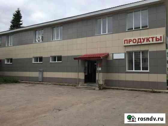 Свободного назначения 271.8 кв.м. Псков