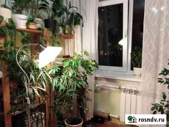 Комната 19 м² в 1-ком. кв., 4/5 эт. Краснодар