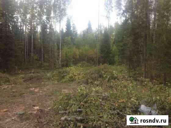 Участок 15 сот. Петрозаводск