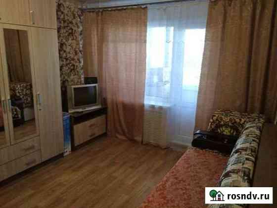 1-комнатная квартира, 28.7 м², 2/5 эт. Засечное