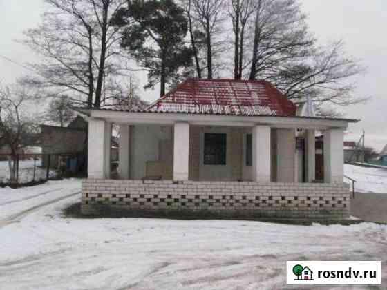 Дом 53 м² на участке 3 сот. Сураж