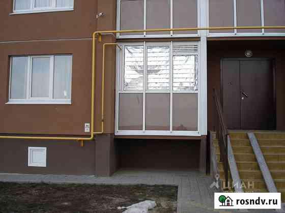 1-комнатная квартира, 30 м², 1/10 эт. Воронеж