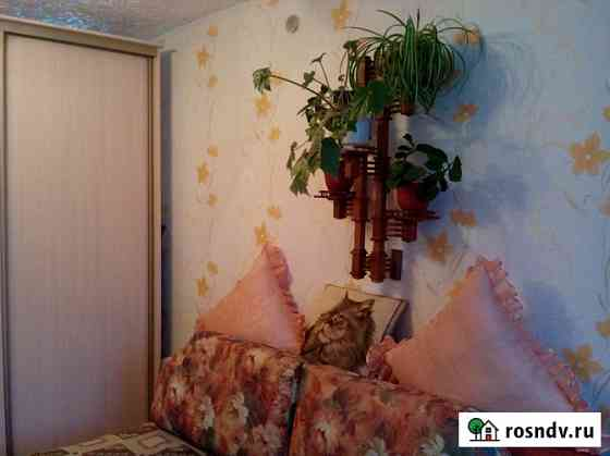 2-комнатная квартира, 17 м², 4/5 эт. Йошкар-Ола