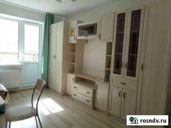 1-комнатная квартира, 30.2 м², 2/12 эт. Янино-1