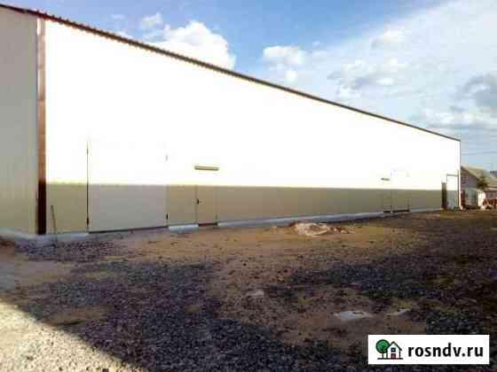Сдам новые склады 100, 200, 360 м в Пирогово Пирогово