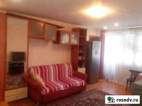 2-комнатная квартира, 42.5 м², 2/2 эт. Быково