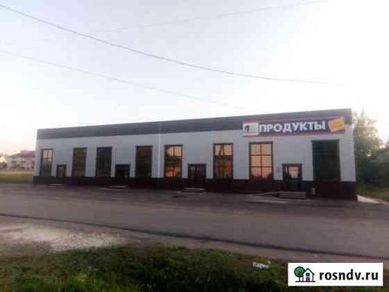 Торговое помещение от 120 до 360 кв.м. Ардатов