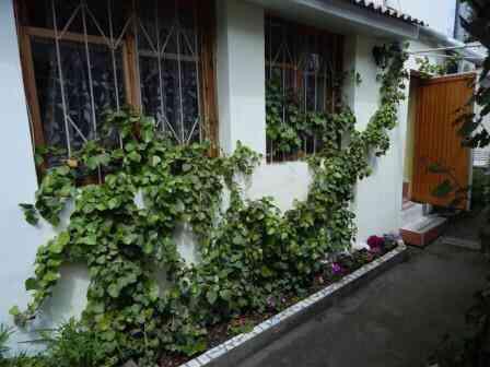Дом 50 м² на участке 1 сот. Алушта