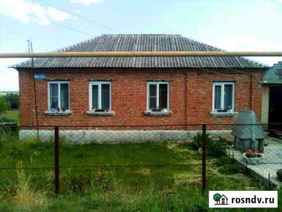 Дом 60.3 м² на участке 16.7 сот. Девица