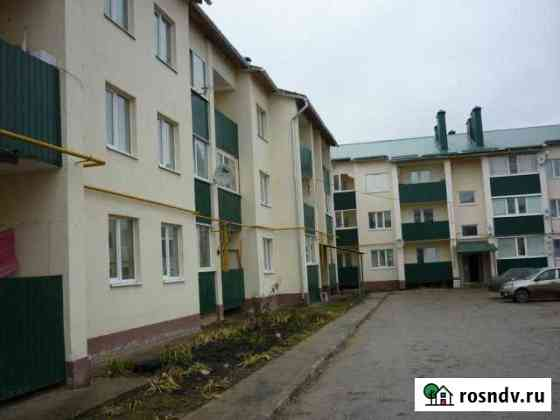 1-комнатная квартира, 24 м², 1/3 эт. Мокшан