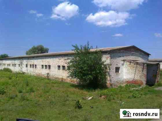 Ферма мтф, Окраина города Крымска Крымск