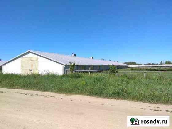 Здания сельскохозяйственного назначения 5409 кв.м Путятино
