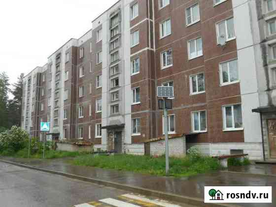 2-комнатная квартира, 55 м², 4/5 эт. Каменногорск