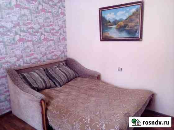 1-комнатная квартира, 25 м², 2/2 эт. Виноградный