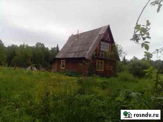 Дом 50 м² на участке 30 сот. Шипуново