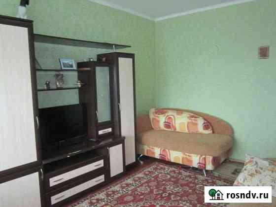 1-комнатная квартира, 23 м², 1/2 эт. Зональное