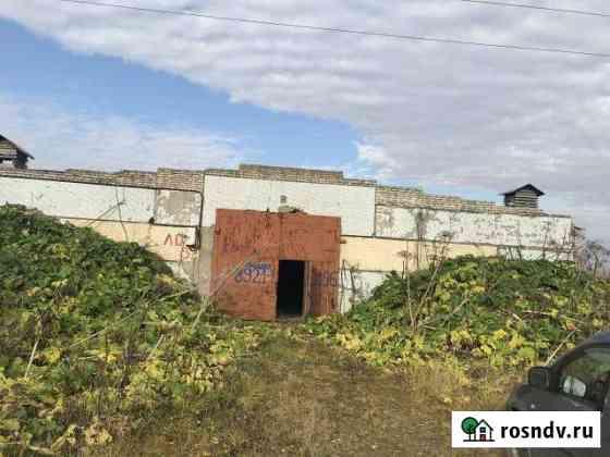 Здание корнеплодо хранилище, 1281 кв.м. д. Поги Форносово