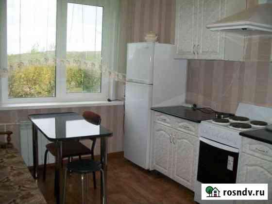 1-комнатная квартира, 29 м², 2/3 эт. Камские Поляны